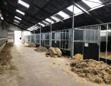 paardenstallen met draaibare voorwand